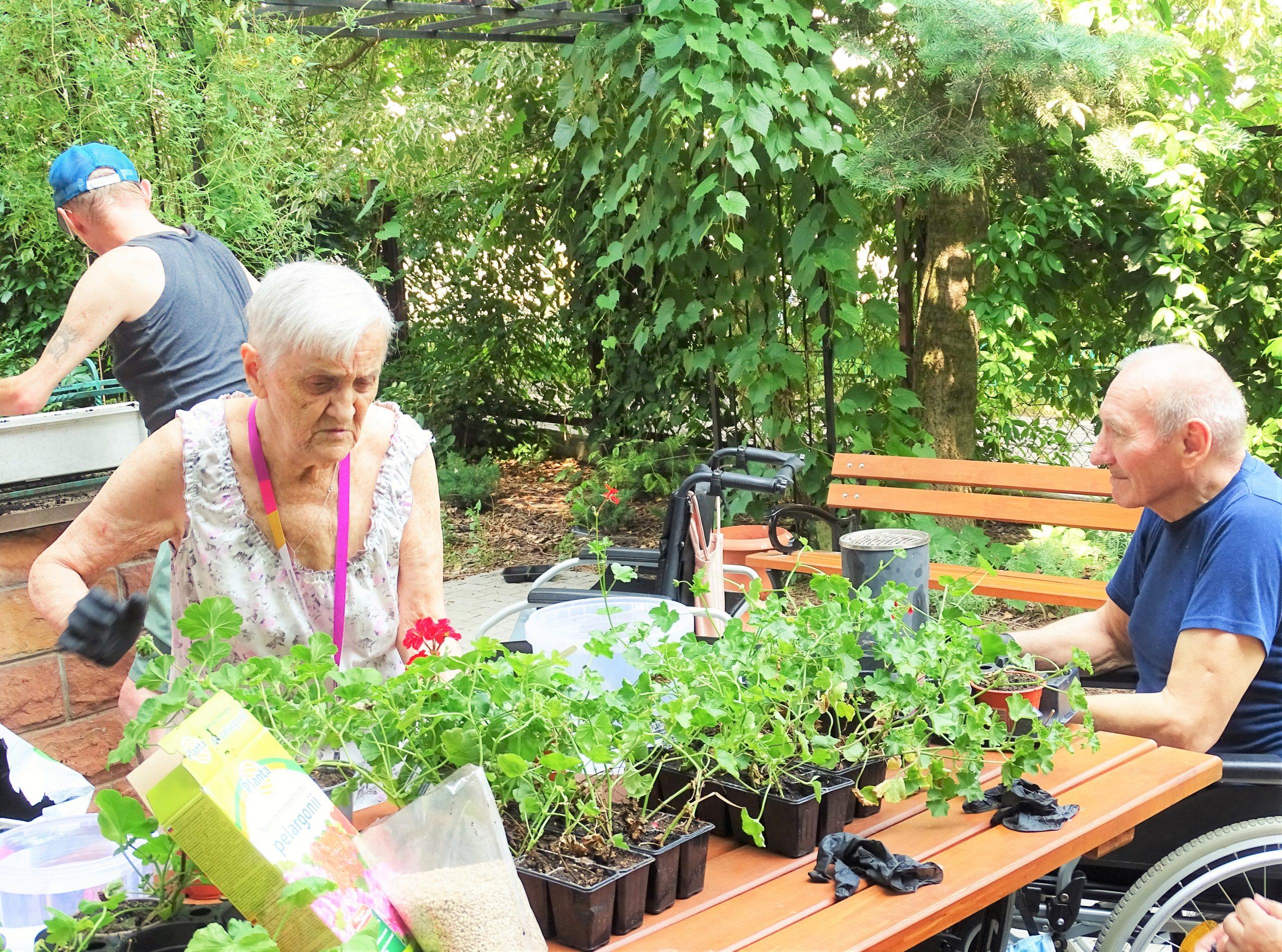 Mieszkańcy domu w ogrodzie sensorycznym przesadzają kwiaty